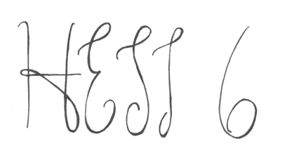 HESI 6